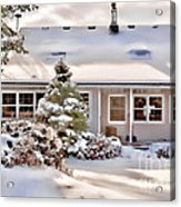 Cosy In Winter Acrylic Print