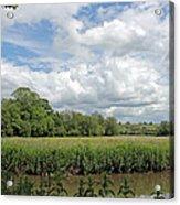 Cotswold Landscape Acrylic Print