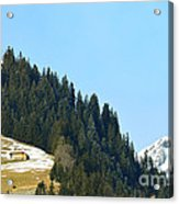 Cottage In Alps Acrylic Print
