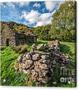 Cottage Ruin Acrylic Print by Adrian Evans