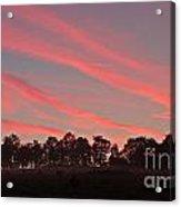 Cotton Candy Sunrise Acrylic Print
