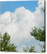 Cottonballs In The Sky Acrylic Print
