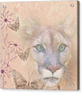 Cougar And Butterflies Acrylic Print