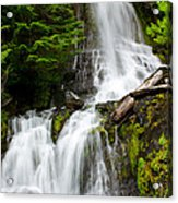 Cougar Falls Acrylic Print