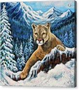 Cougar Sedona Red Rocks  Acrylic Print