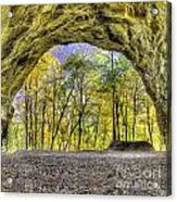 Council Overhang At Starved Rock Acrylic Print
