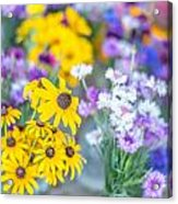 Country Blooms Acrylic Print