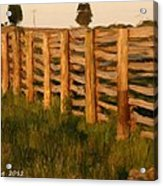 Country Fence In England Acrylic Print