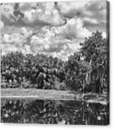 Country Lake 2 Acrylic Print