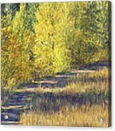 Country Lane Digital Oil Painting Acrylic Print