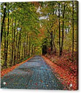 Country Lane In Autumn Acrylic Print