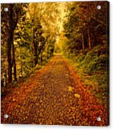 Country Lane V2 Acrylic Print