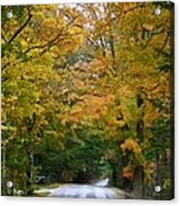 Country Road Fall Vermont Acrylic Print