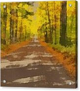 Country Road In Autumn Acrylic Print