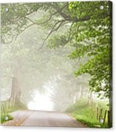 Country Road In The Fog Acrylic Print