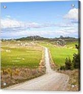 Country Road Otago New Zealand Acrylic Print