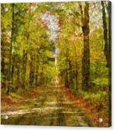 Country Road Take Me Home Acrylic Print