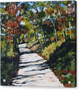 Country Road Two Acrylic Print