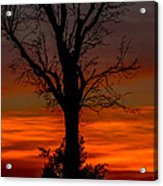 Country Sunsets Acrylic Print