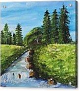 Countryside Acrylic Print