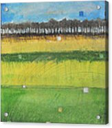 County S Acrylic Print