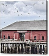 Coupeville Wharf Acrylic Print by Jeff Swanson