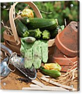 Courgette Basket With Garden Tools Acrylic Print