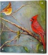 Courting Cardinals, Birds Acrylic Print