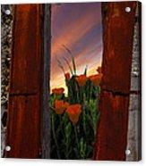 Courtyard Window Acrylic Print