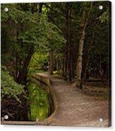 Cove Path Acrylic Print