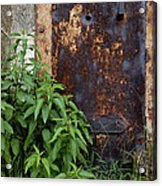 Covered In Rust Acrylic Print