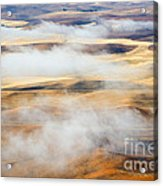 Covering The Gold Acrylic Print by Mike  Dawson