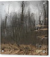 Coverstory Acrylic Print