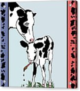 Cow Artist Cow Art Acrylic Print