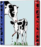 Cow Artist Cow Art II Acrylic Print