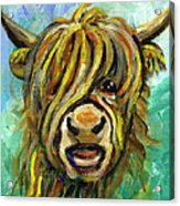 Cow Face 101 Acrylic Print