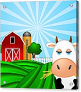 Cow On Green Pasture With Red Barn With Grain Silo  Acrylic Print
