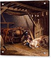 Cow Shed Acrylic Print by Robert Hills