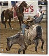 Cowboy Hang On Acrylic Print