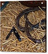 Cowboy Theme - Horseshoes And Whittling Knife Acrylic Print by Paul Ward
