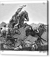 Cowboys And Longhorns Acrylic Print