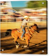 Cowboys Ride And Rope Cattle During San Acrylic Print