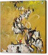 Cows Acrylic Print by Negoud Dahab