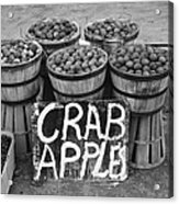 Crab Apples Acrylic Print