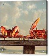Crab Dance Acrylic Print