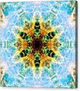 Crab Nebula IIi Acrylic Print