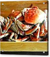 Crab To Clean Acrylic Print