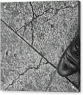Crack In The Pavement Acrylic Print