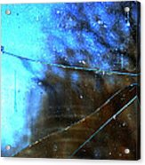 Cracked But Not Shattered Acrylic Print