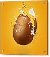 Cracked Egg Acrylic Print by Andrea Aycock